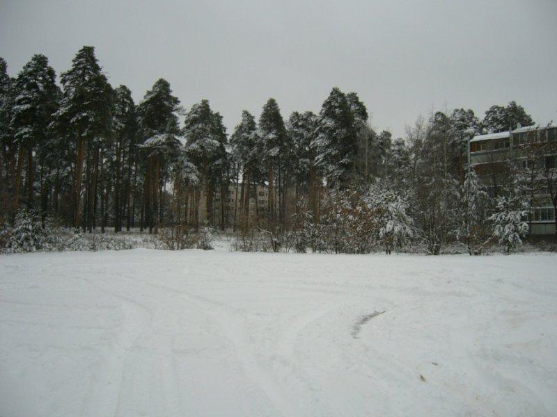 Раменское, Электрификации ул., 30 км от МКАД